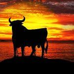 Consejos para viajar a España