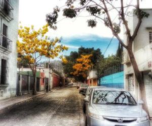 Vivir en Oaxaca